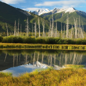 Herbert Lake reflection by Karl Jones - Landscapes Mountains & Hills (  )