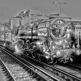 Oliver Cromwell by Adam Brett - Transportation Trains ( railway, travel, hastings, oliver cromwell, steam )
