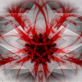 Red Flower in Abstract by Nancy Bowen - Illustration Abstract & Patterns ( abstract, red, vignette, black, flower )