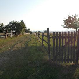 Weidezäune by Marianne Fischer - Landscapes Prairies, Meadows & Fields (  )