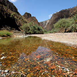 Wadi Dirhur by Prasad Kotian - Landscapes Travel ( socotra, wadi, yemen, dirhur, wadi dirhur, oasis )