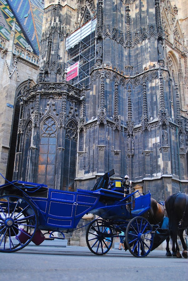 St. Stephen's Cathedral~ Vienna, Austria ~ Summer 2018 by Ray Anthony Di Greco - Buildings & Architecture Public & Historical ( historic district, place of worship, churches )
