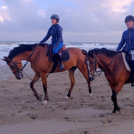 ridi ng on the beach by Fred Goldstein - Sports & Fitness Other Sports ( riding, sea, france, couple, beach, deauville )