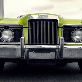 Cougar by Todd Reynolds - Transportation Automobiles (  )