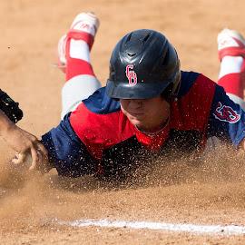 by Scott Padgett - Sports & Fitness Baseball