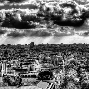 From Montparnasse to Eiffel Tower  by Gabriel Nouar - Buildings & Architecture Public & Historical ( paris, tower, b&w, hdr, bw, eiffel, montparnasse )