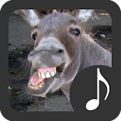App Donkey Sounds apk for kindle fire