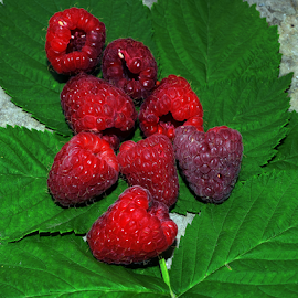 raspberries by LADOCKi Elvira - Food & Drink Fruits & Vegetables