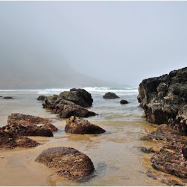 a Misty day at Victoria bay by Johann Perie - Landscapes Beaches ( sea, mist )