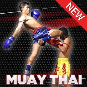 Muay Thai: The Complete Series Online PC (Windows / MAC)