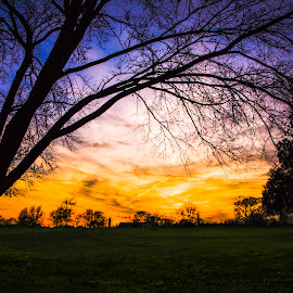 Park sunset 1 of many :) by Dan Miller - Novices Only Landscapes (  )