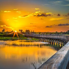Bridge to the Sun by Tim Hancock - Landscapes Sunsets & Sunrises ( clouds, water, sunset, everglades, walkway, bridge )