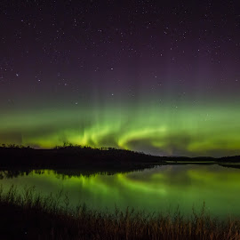 After Midnight by Laura Gardner - Novices Only Landscapes ( water, peaceful, nd, stars, northern lights, lake, night, prairie )