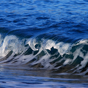 Wave by Pixie Simona - Nature Up Close Water ( water, blue sea, waves, wave, sea, seascape,  )