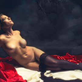 by Peter Driessel - Nudes & Boudoir Artistic Nude ( silk, photograph, nude, implied, photo )