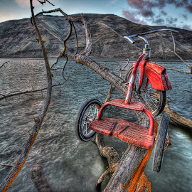 Beyond Roads by Eric Demattos - Transportation Bicycles ( tricycle, eric demattos, sunset, river )