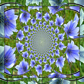 Little Blue Flower by Janet Young- Abeyta - Abstract Patterns