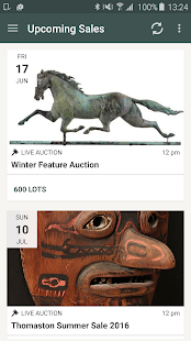 Thomaston Auction - screenshot