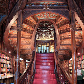 Books are all the way up by Claudia Freitas - Buildings & Architecture Architectural Detail ( #read, #colors, #shelves, #books, #steps, #stairs )