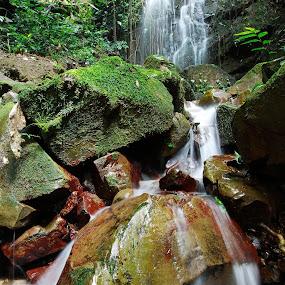 Crocker Range Park..Kimanis by Mohd Fahmi Husen - Landscapes Waterscapes