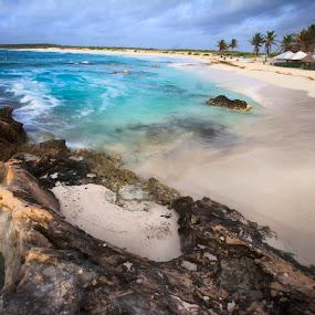 Wild Beach by Cristobal Garciaferro Rubio - Landscapes Beaches ( shore, water, mexico, waves, cozumel, beach, wild beach )