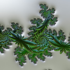 Green glass  by Cassy 67 - Illustration Abstract & Patterns ( abstract, swirl, green, wallpaper, spiral, vitality, digital, abstract art, digital art, glass, flowers, fractal, fractals, flower )