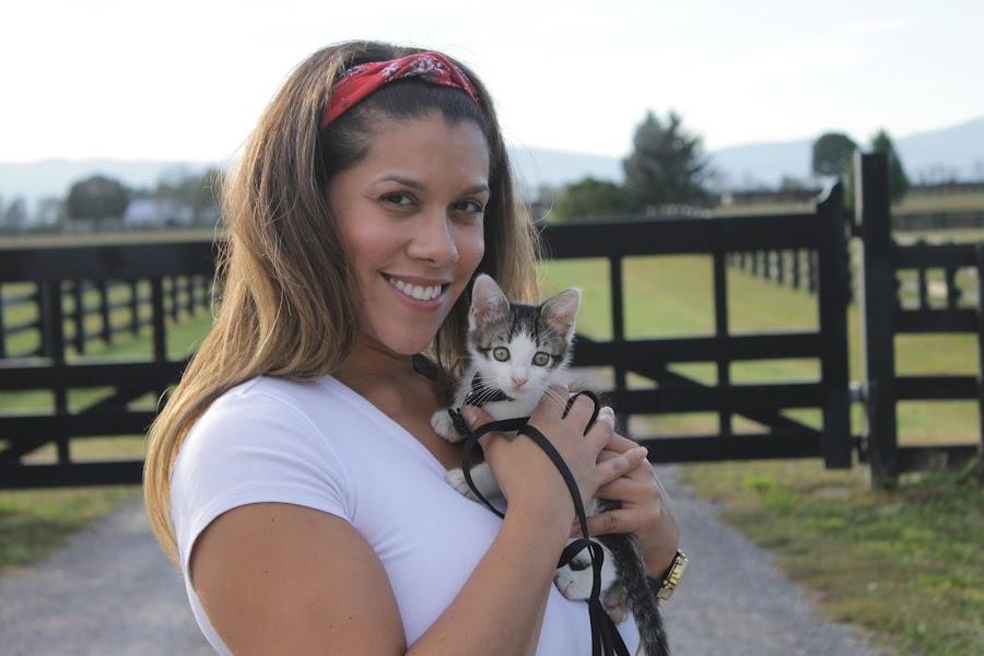 Tammy and AJ by Carlito Rivera - Animals - Cats Kittens ( pets, cats, farms, ny, kittens,  )