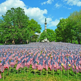37,000 flags were displayed in honor of those fallen soldiers from Ma. from the Revolutionary War days through the present time. by Harry Goodman - City,  Street & Park  City Parks