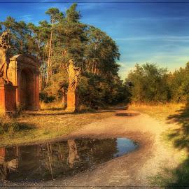 zastávka v lese by Jana Vondráčková - Landscapes Forests