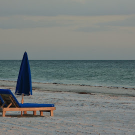Let's lounge at the beach by Shari Linger - Landscapes Travel ( beaches, tranquil places, sunsets, florida, tropical, gulf of mexico, indian shores beach,  )