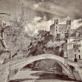 view of the bridge and castle in Dolceacqua by Roberta Sala - City,  Street & Park  Street Scenes ( dolceacqua, castle, historical, street scene, street photography )