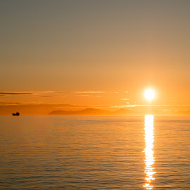Midnight sun 1 -  30.05.15 by Linda Marhaug - Landscapes Sunsets & Sunrises ( sunset, midnight sun, sunlight, sun,  )