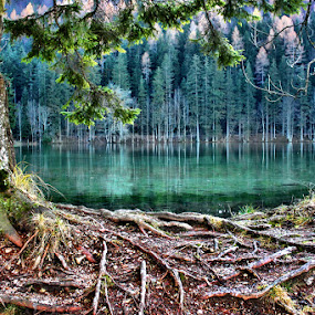 Jezersko by Simon Kovacic - Landscapes Waterscapes (  )