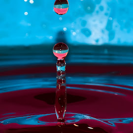 Water drop by Mohan V - Abstract Water Drops & Splashes ( water, watercolor, splash water photography )