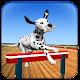 Super Dog Jump Crazy Racing 3D 2017