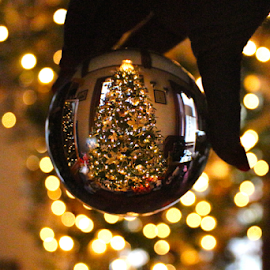 Crystal Ball Christmas by Barbara Suggs - Public Holidays Christmas
