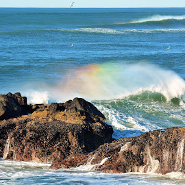 Rainbow in Wave by Lori Pagel - Landscapes Beaches ( colorful, rocky, rock, ocean, beach, yellow, coast, beaches, sky, nature, shadow, wet, rocks, water, orange, green, waves, colors, coastal, shadows, red, blue, color, outdoors, rainbow, foam )