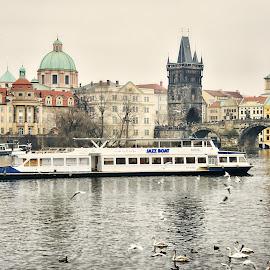 Praha by Petr Olša - City,  Street & Park  Skylines