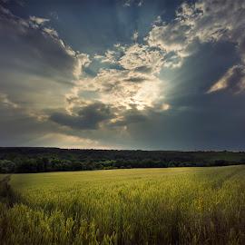 by Ева Йорданова - Landscapes Prairies, Meadows & Fields
