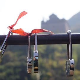 Love Locks by Amber O'Hara - Artistic Objects Still Life ( love, red, locks, great wall, china,  )