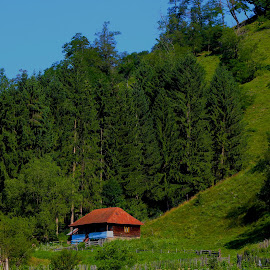 Rural House by Alexandru Lupulescu - Landscapes Mountains & Hills ( rural house,  )