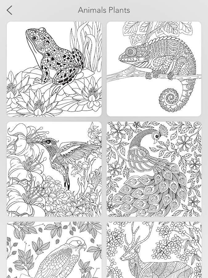 Garden Coloring Book Screenshot 15