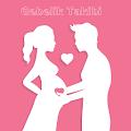 Free Pregnancy Tracker APK for Windows 8