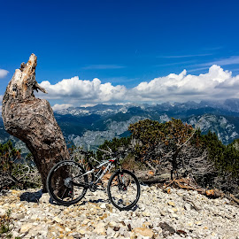 Vogel by Mario Horvat - Instagram & Mobile iPhone ( clouds, mountains, bike, tree, mtb, outdoor, vogel )
