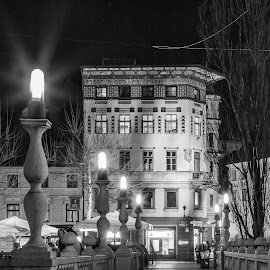 by Mario Horvat - Black & White Street & Candid ( touristic, slovenia, ljubljana, night, bridge, light )