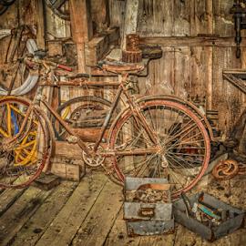 by Dragan Rakocevic - Transportation Bicycles