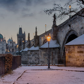Charles bridge  by Robert Grim - City,  Street & Park  Historic Districts ( czech republic, foto, prague, historic, charles bridge )