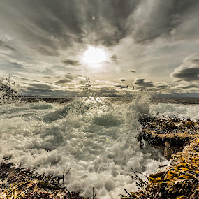Waves by Benny Høynes - Landscapes Waterscapes ( canon, andøya, waves, sea, børra, searocks )