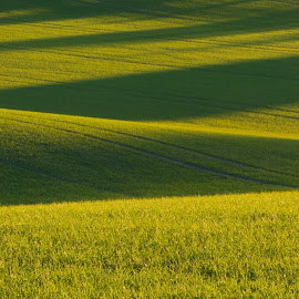 Farm waves by John Einar Sandvand - Landscapes Prairies, Meadows & Fields ( farm, ås, farm waves, fields, norway )