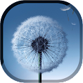 App Magic Neo Wave : Dandelion LWP APK for Windows Phone